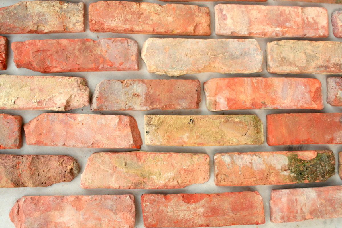 Lica cegły