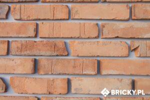 Płytki z cegły (lica)